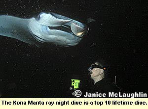 The Kona Manta ray night dive is a top 10 lifetime dive